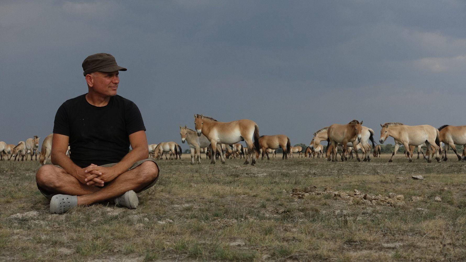 Zolta Török on sättinud ennast filmivõtete ajal metshobusekarja juurde istuma. Foto: Balázs Badár